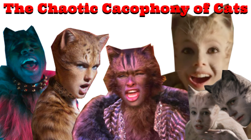 The Chaotic Cacophony of Cats