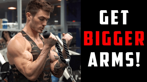 Top 8 Best Workouts to Get Shredded Arms