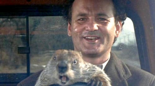 """My Review of """"Groundhog Day"""""""