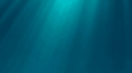 all white submarine