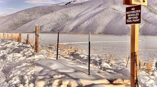 A Lonesome Snow Walk