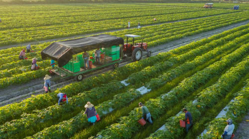 Subsidizing Non-Meat Farming