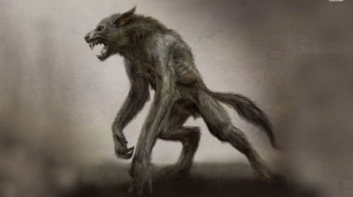 The hunt for the Kentucky wolfman