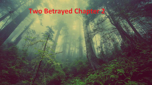 Two Betrayed Chapter 2