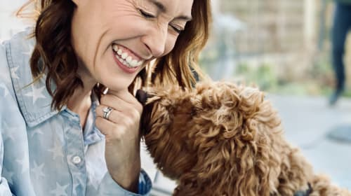 Seven Top Tips for Training YOUR Dog