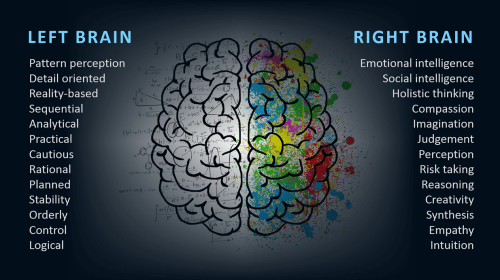 Difference Between Left Brain and Right Brain
