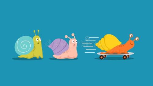 The Snail Race