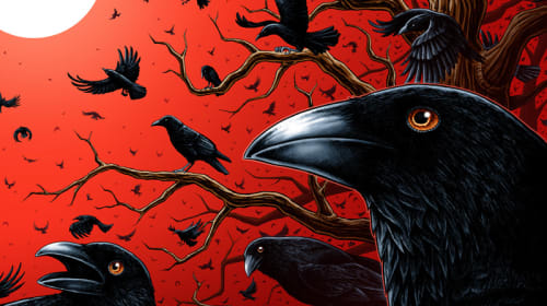 The Crows Caw