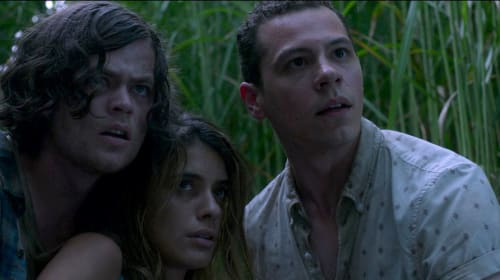 Review of: In the Tall Grass(2019)