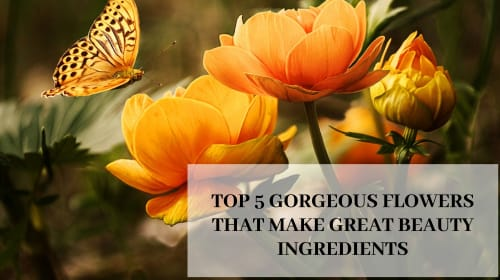 Top 5 Gorgeous Flowers That Make Great Beauty Ingredients