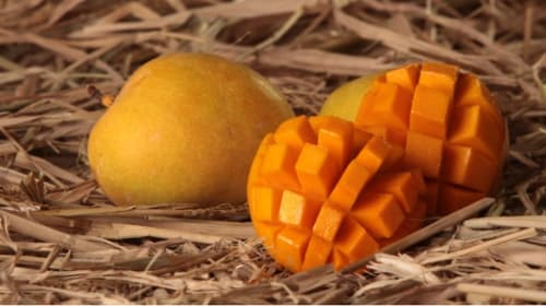 Why is Devgad Alphonso the Best Compared to Other Mango Varieties?