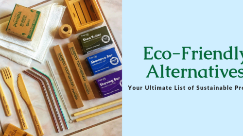 Simple, sustainable/eco-friendly alternatives for everyday products