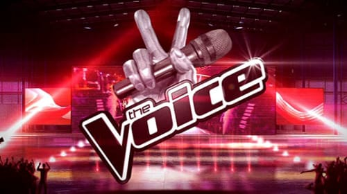 The experience of a quarter-finalist at The Voice