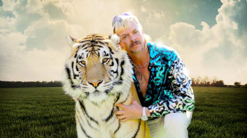 """My Review of """"Tiger King"""""""