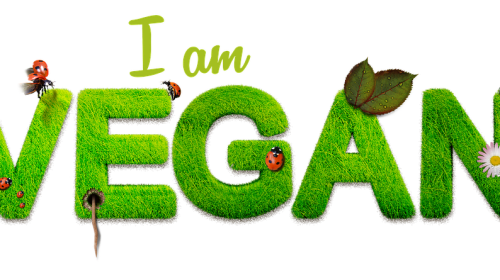 What Veganism and Environmentalism Have In Common and Is It Possible To Convert Others to a Vegan Lifestyle?