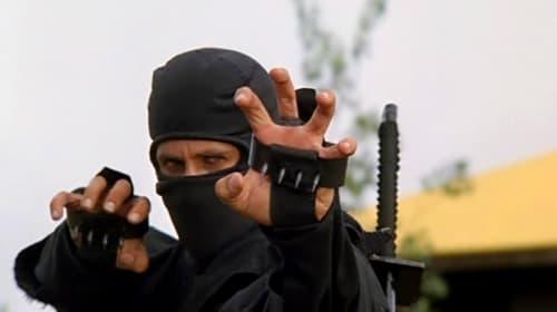 5 Underappreciated Martial Arts Films