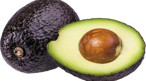Avocado – The Fertility Fruit