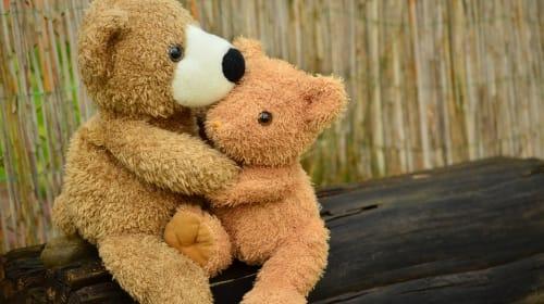 Hunting the Teddy Bear Army