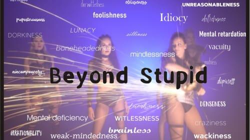 Beyond Stupid