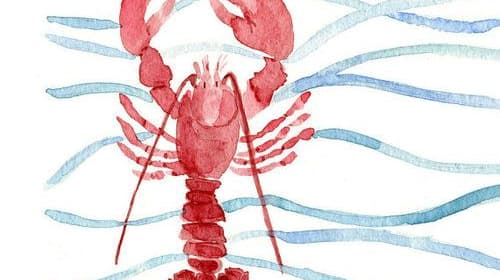 You're (not) My Lobster