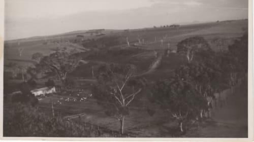 Rowsley, Bacchus Marsh