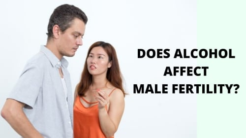 Does Alcohol Affect Male Fertility? Facts You Need To Know