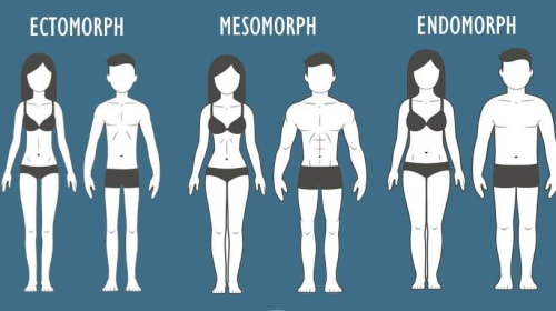 Body Type Eating