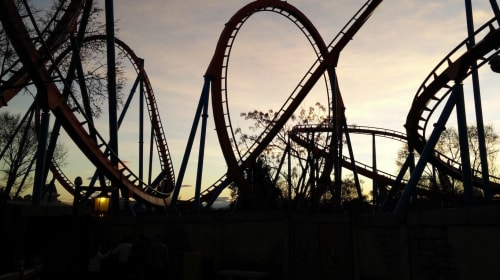 Roller Coaster Life