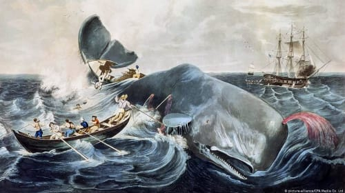 """Moby-Dick"" by Herman Melville"