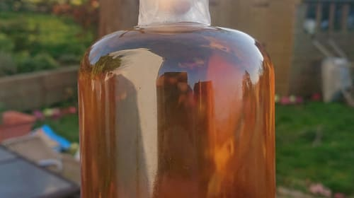 Homebrew Mead