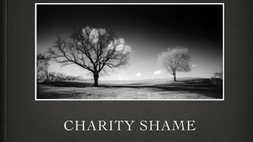 The Two Aspects of Donation Shaming