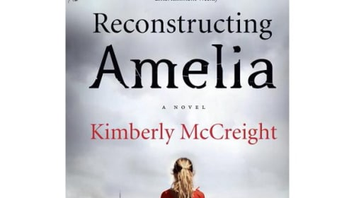 Reconstructing Amelia - A Book Review