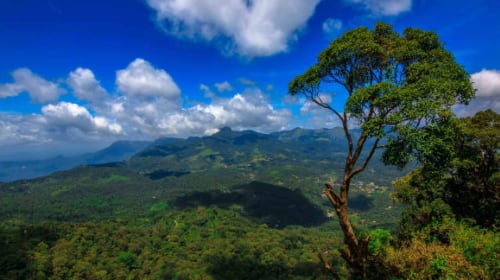 Kerala the land with Untamed Elegance