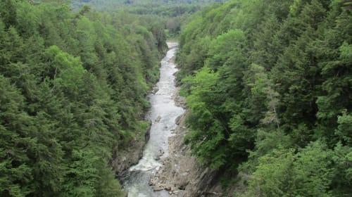 2 Gorge Walks in Vermont