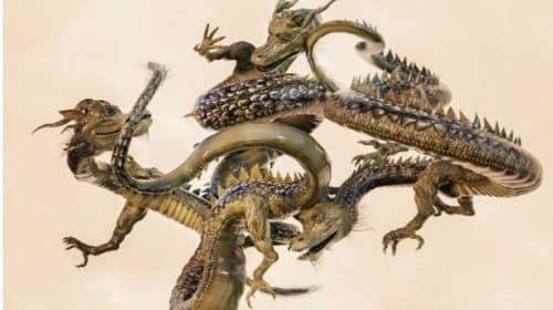 The Dragon.