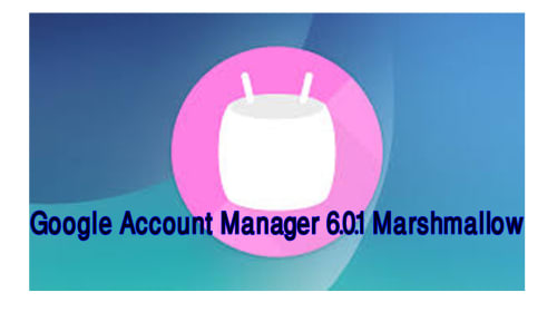GOOGLE ACCOUNT MANAGER 6.0.1 APK_MARSHMALLOW