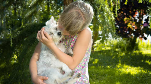 Adorable and Meaningful Gifting Ideas for Dog Lovers