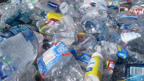 The Plastic Crisis