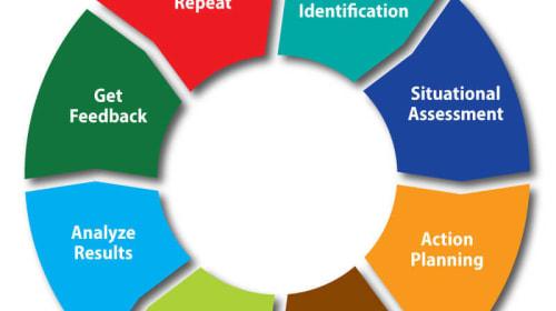 Organizational Development Plan