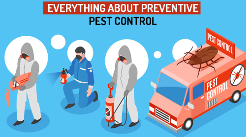 Everything About Preventive Pest Control