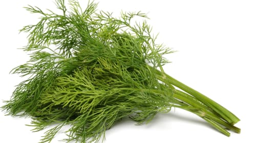 What's The Deal, Dill?