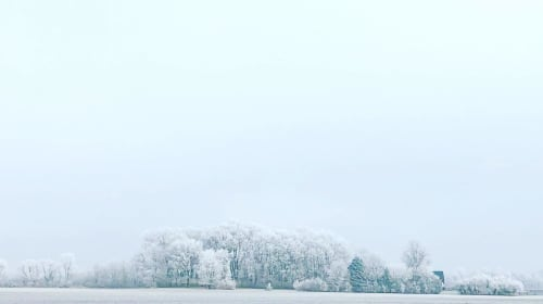 Lessons of Winter