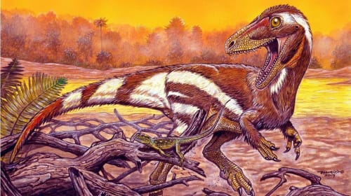 Discovered in Brazil a fossil of about 115 million years of an unknown species of dinosaur