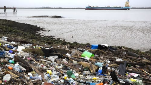 The Thames Is Severely Polluted With Plastic