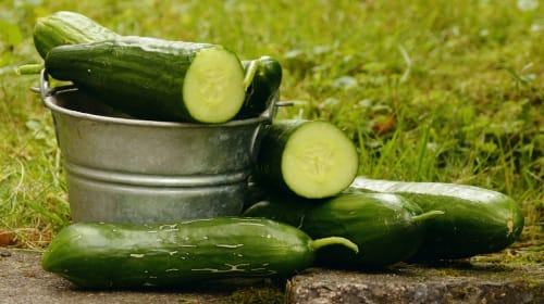 8 Special Beauty Tips Using Cucumbers