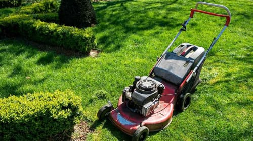Taking Good Care of Your Lawn