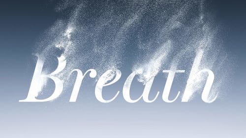 """Book Review: """"Breath"""" by James Nestor"""