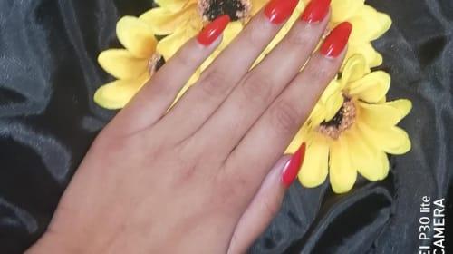 A Crimson Petal
