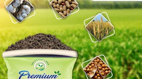 Know About Organic Fertilizer and Its Amazing Benefits.