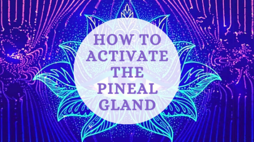 Activating The Pineal Gland